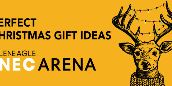 Perfect Christmas Gift Ideas