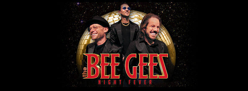 "The Bee Gees ""Night Fever"""